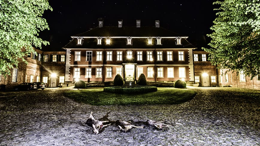 Wild-Jagd-Schloss-Gartow_5