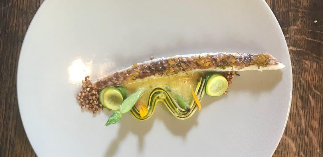 Zucchini_Slider-1132x551