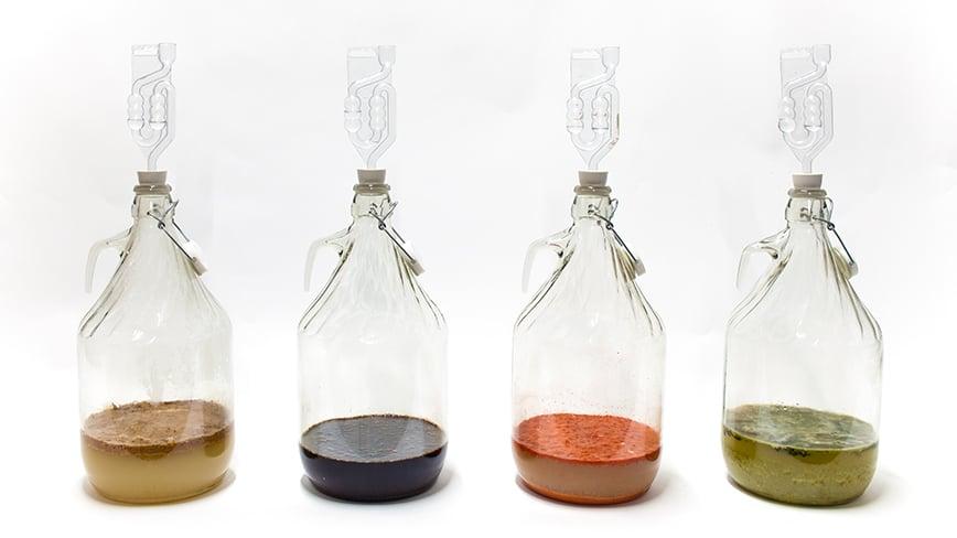 fermentation_saefte