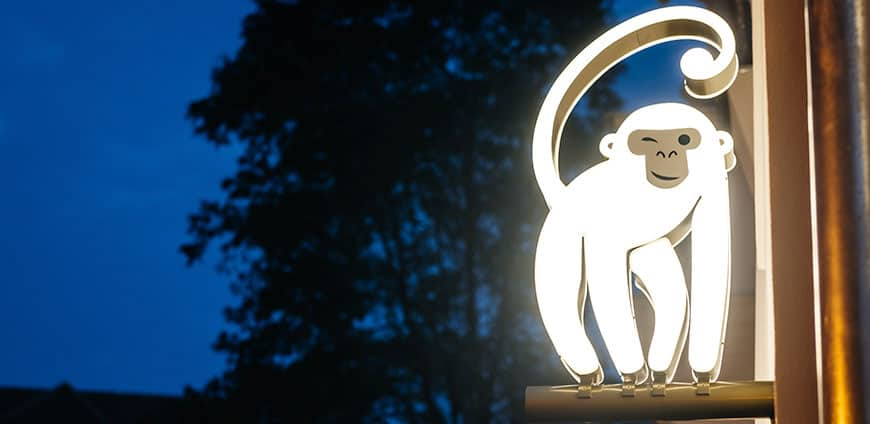 rp204-white-monkey-01-slider