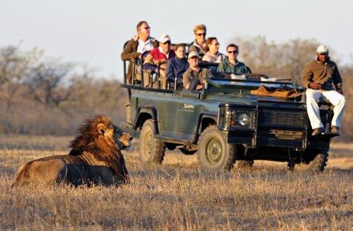 tourismus-safari-nordafrika