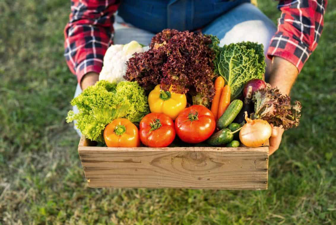 Lebensmittel-Gemüse-Bio-1132x758